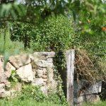 Naturseteinmauer