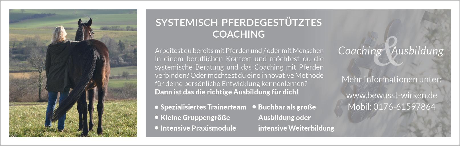 Systemisch Pferdegestütztes Coaching