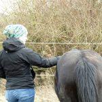 Maria mit Henry Coachiing mit Pferd