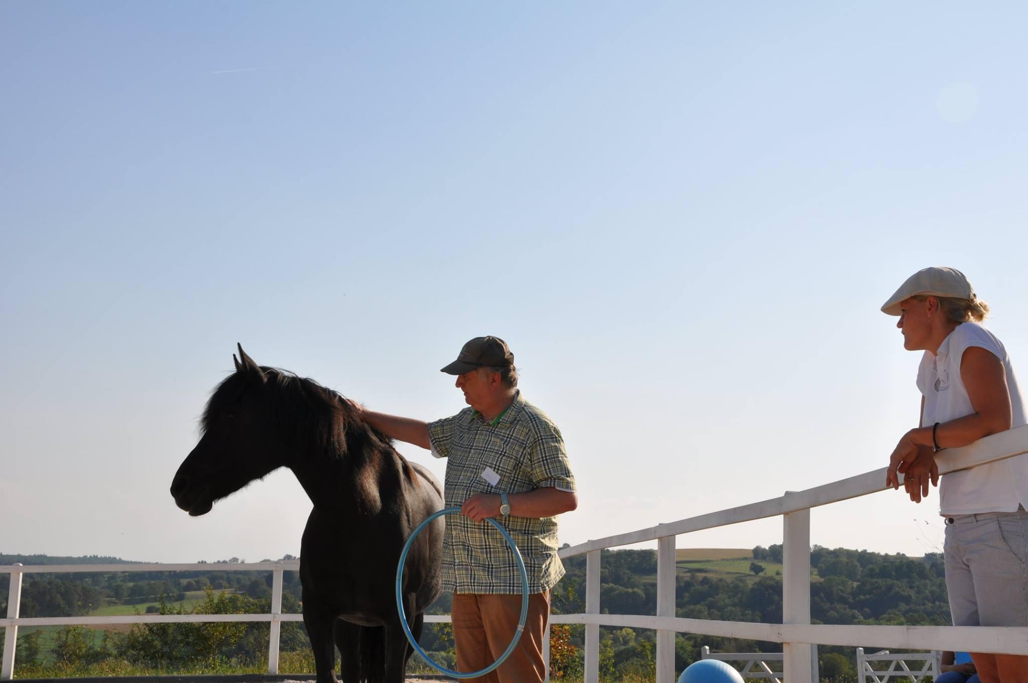 Ausbildung Pferdegestütztes Coaching Alexanra Lohr