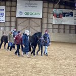 Ausbildung Pferdecoaching (25)