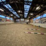 Ausbildung Pferdecoaching (32)