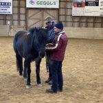 Ausbildung Pferdecoaching (33)