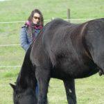 Teilnehmerin Pferdecoaching