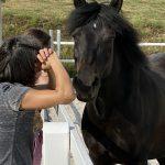 Co Trainerin Pferd