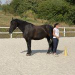 Klientin im Pferdegestützten Coaching