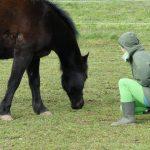 Klientin und Pferd