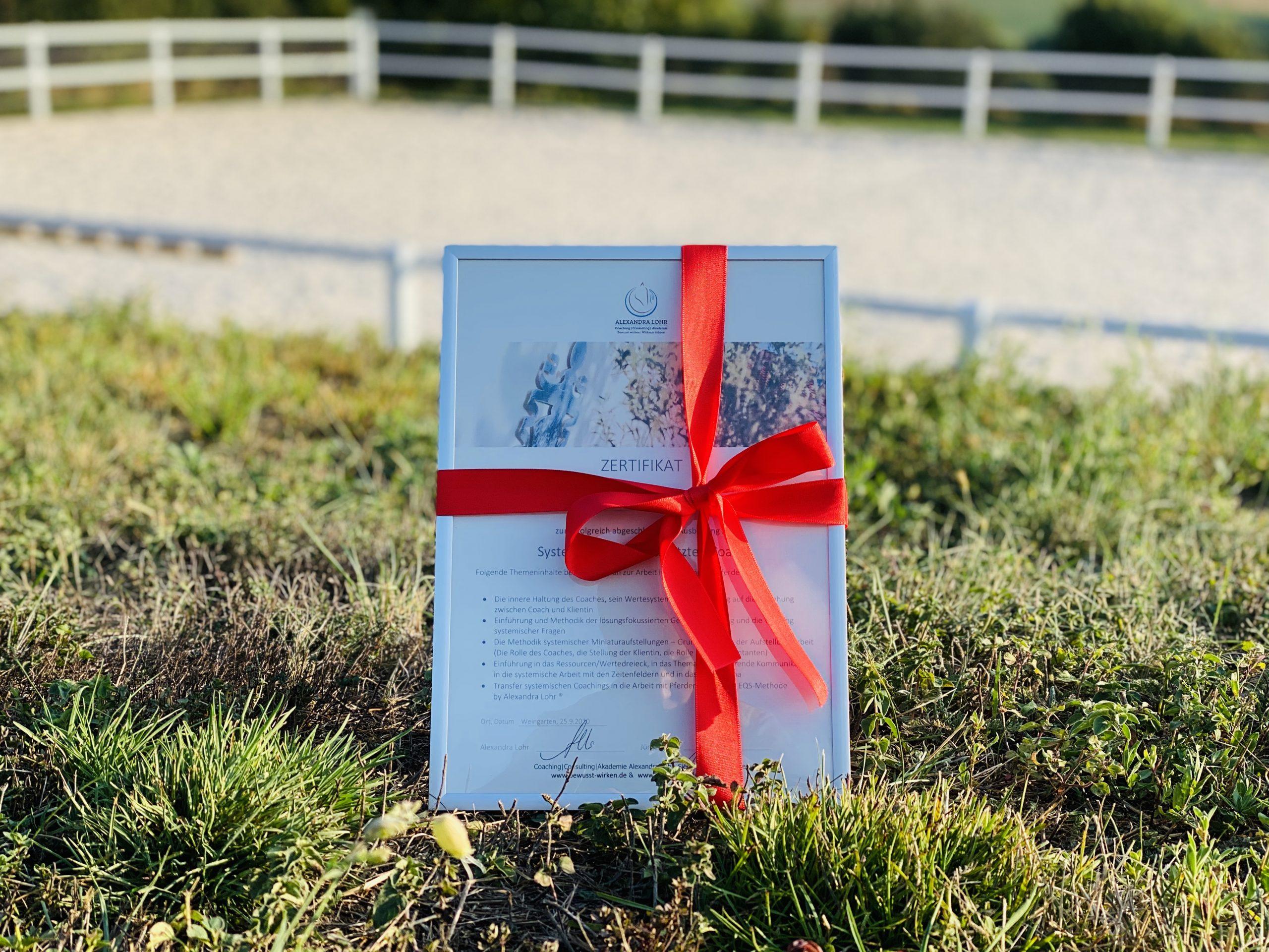 Zertifikat Pferdegestütztes Coaching