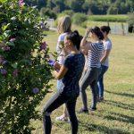 Übung Teilnehmer Pferdecoaching