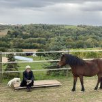 Frau mit Pferd auf Koppel