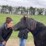Frau küsst Pony