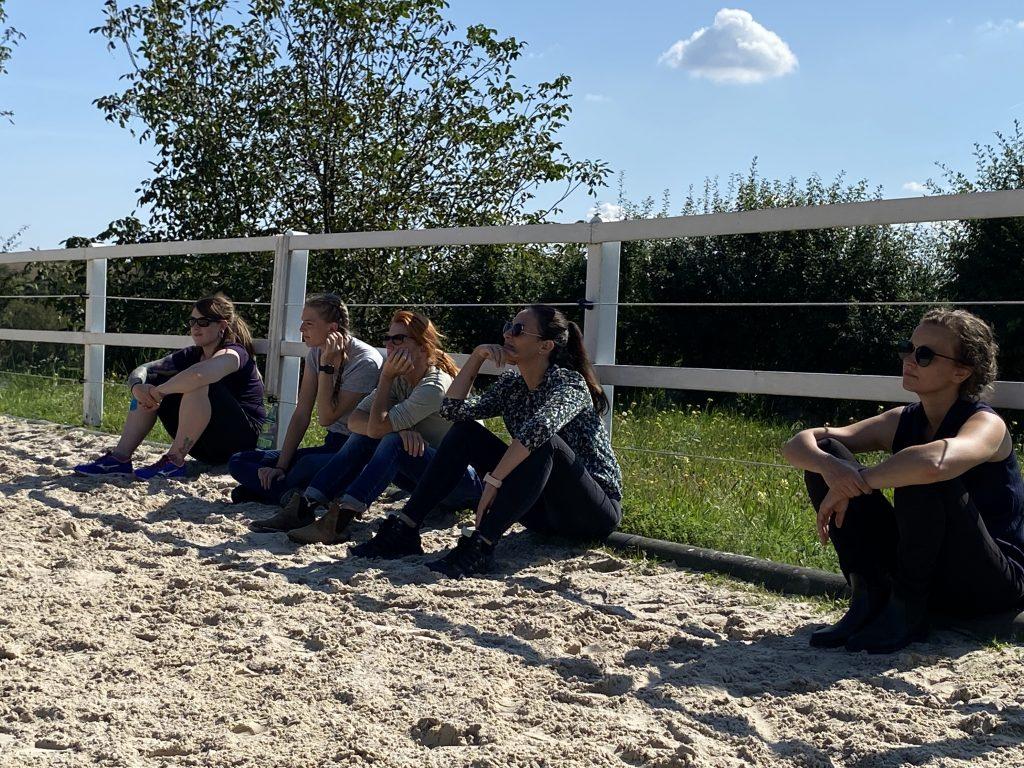 Teilnehmer im Pferdecoaching